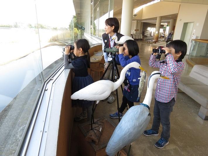 谷津干潟自然観察センターでは望遠鏡や双眼鏡を無料で貸してくれます