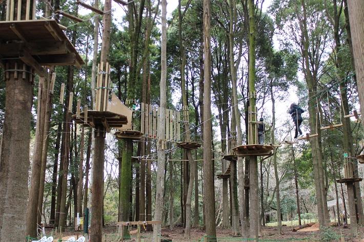 泉自然公園にオープンした「フォレストアドベンチャー」のアドベンチャーコースは最も難易度が高く長いコース