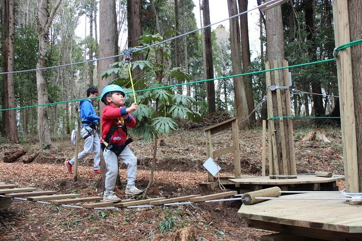 泉自然公園にオープンした「フォレストアドベンチャー」は未就学児でも楽しめます