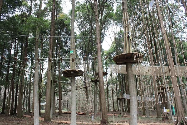 泉自然公園にオープンした「フォレストアドベンチャー」