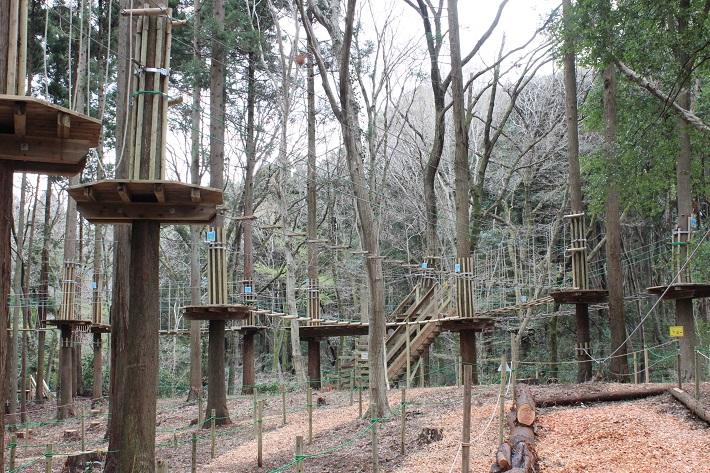 泉自然公園にオープンした「フォレストアドベンチャー」のキャノピーコースは家族連れにオススメ