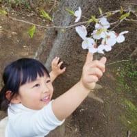 背の高い植物は、子供に背伸びしてちょっと触ってもらうといい写真が撮れます