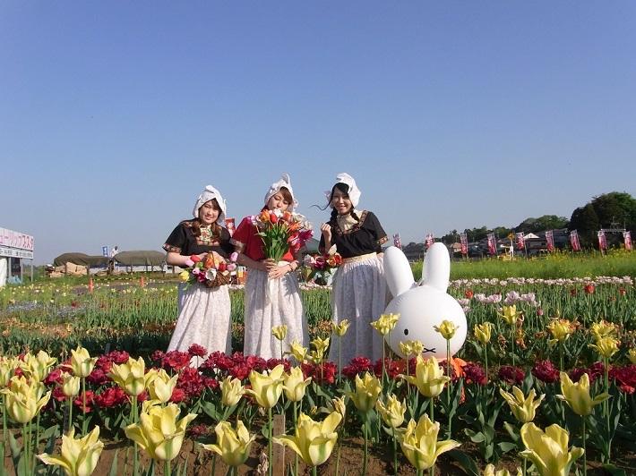 佐倉チューリップフェスタではオランダ衣装の試着体験もできます。赤ちゃん用から大人用までとサイズも充実