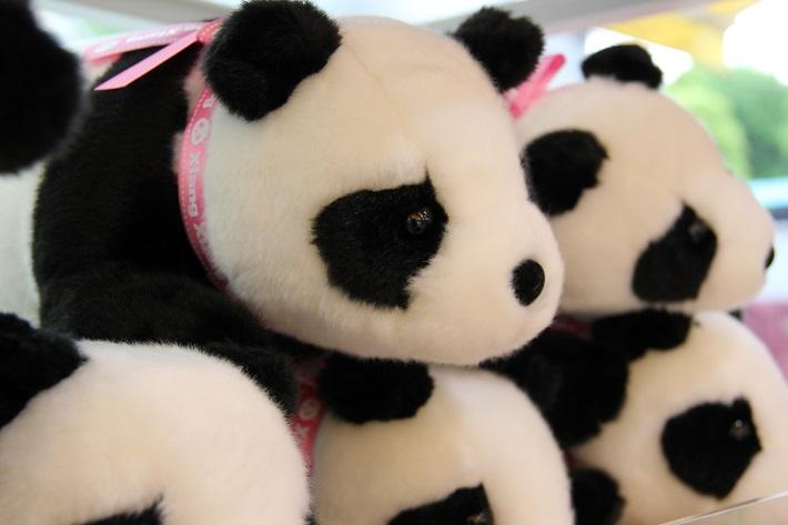 上野動物園お土産 パンダの仔 伏せM