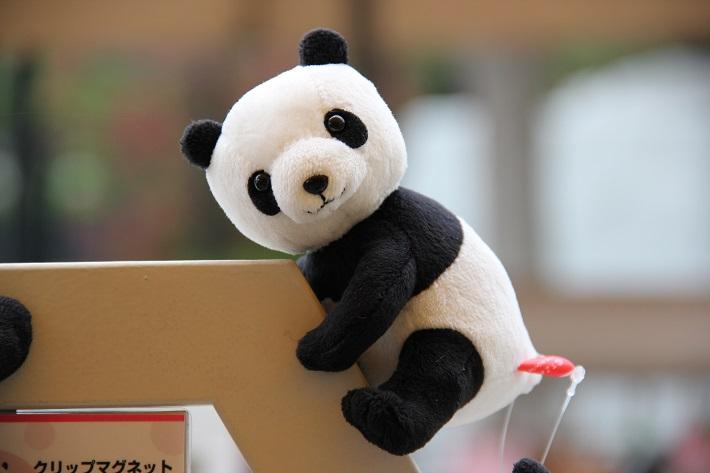 上野動物園お土産クリップマグネット
