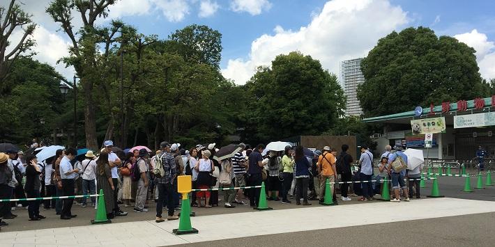 6月6日、先着順に観覧方法が変わった上野動物園の入園チケット販売を待つ列