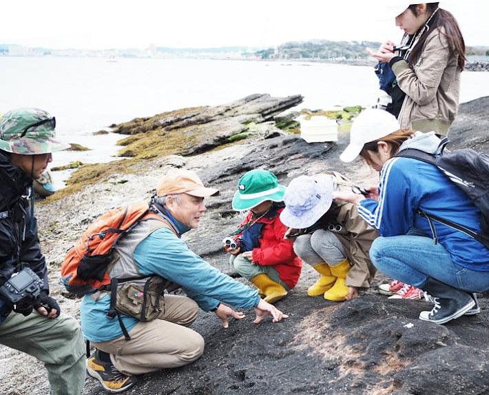 沖ノ島を巡るエコツアーも定期的に開催しています