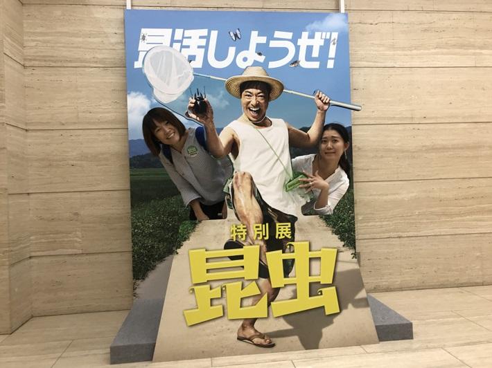 昆活マイスターとして人気の香川照之さんが特別展「昆虫」のオフィシャルサポーター