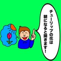 パパ芸人タケトの育児漫画_子どもならではの可愛い解答①チューリップの花は朝になると開きます!