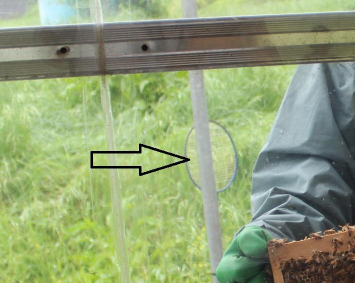 はちみつ王子のいる「はちみつ工房」(千葉県君津市)では養蜂の現場を間近で見られます