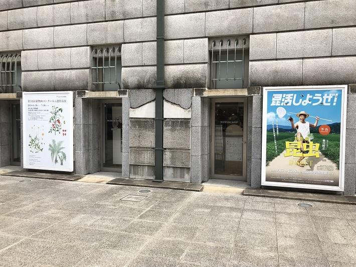 上野国立博物館で開催中の特別展「昆虫」エントランス