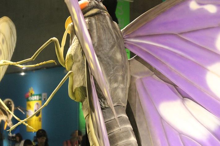 特別展「昆虫」には巨大な昆虫オブジェが展示してあります。