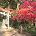 茨城県つくば市の筑波山は期間限定でケーブルカーとロープウェーが夜間運行さし、紅葉のライトアップも鑑賞できる