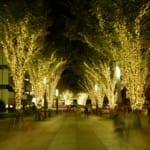 千葉ニュータウン中央駅前のクリスマスイルミネーションは千葉県内でおすすめのスポット