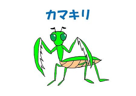 キッズヨガ カマキリのポーズイメージ