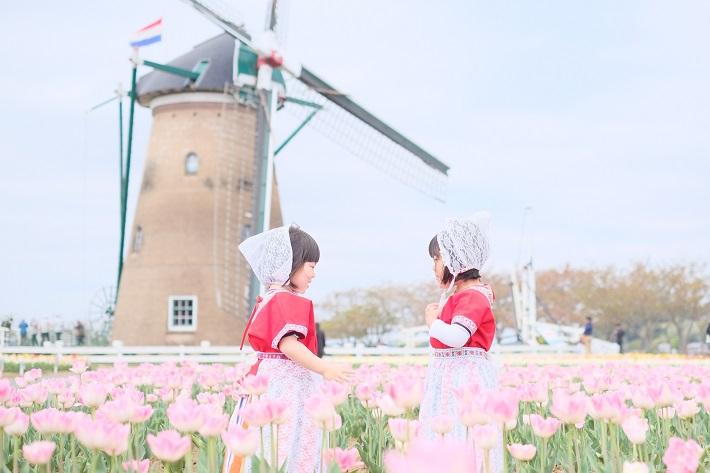 佐倉チューリップフェスタ2020オランダ風車とオランダ衣装の女の子