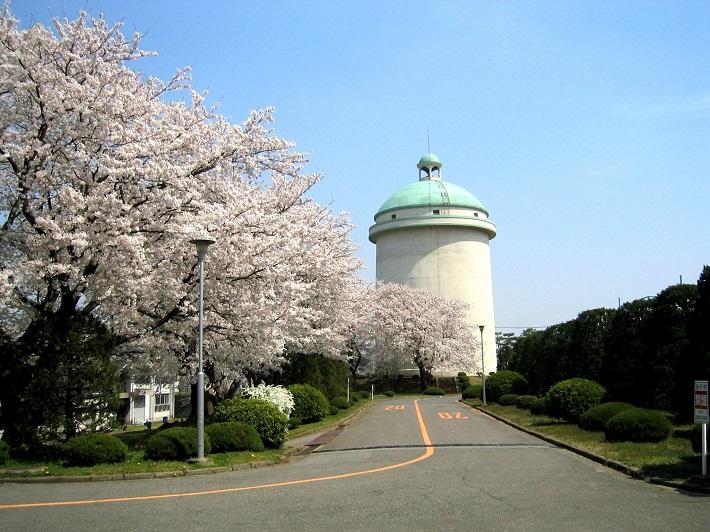 1937年の県営水道創設当時に松戸市に建設された栗山配水塔