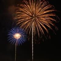 真夏の夜空を彩る浦安市花火大会の花火