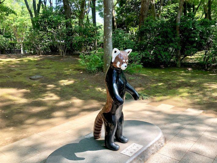 かとみさんレッサーパンダ2