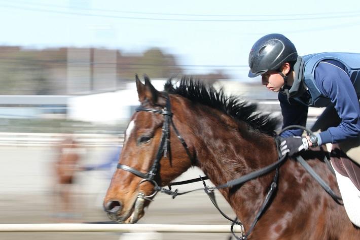 ジョッキーを目指して乗馬の練習をする馬の学校の男子生徒