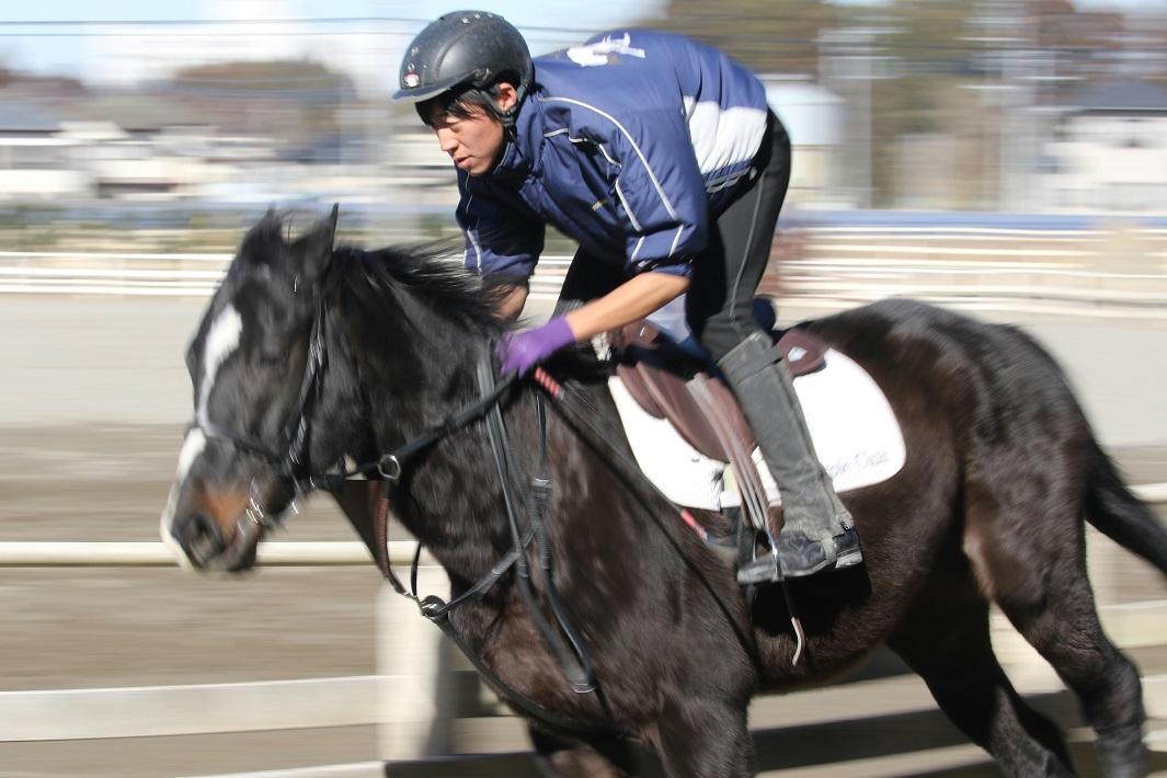 馬のプロを養成する学校で騎乗練習をするアニベジの学生