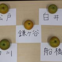 今が旬! 千葉県の梨(幸水)を食べ比べてみました