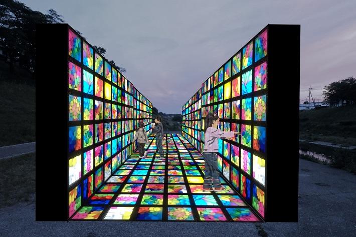東京理科大学建築学科光の道