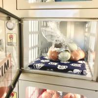奈良たまご卵自販機