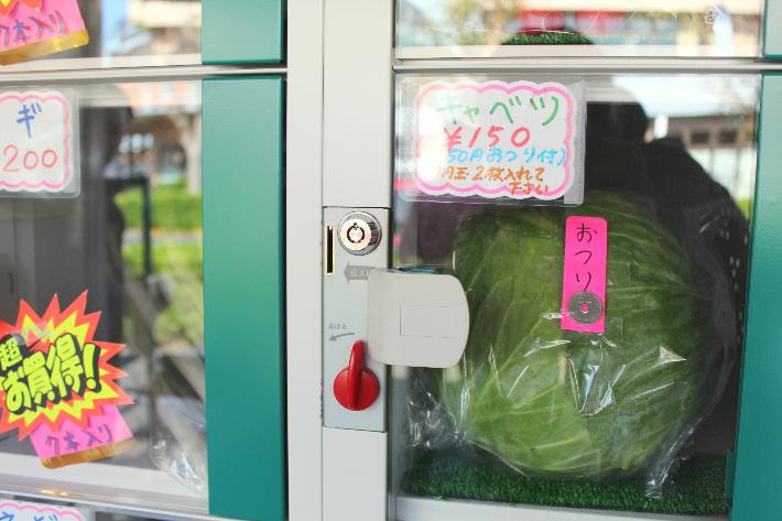 野菜自販機キャベツ