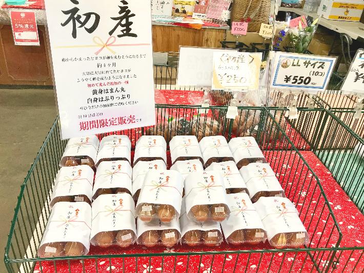 奈良たまご初産卵