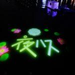 千葉公園の池にプロジェクションマッピングで映し出される大賀ハスと夜ハスんのロゴ