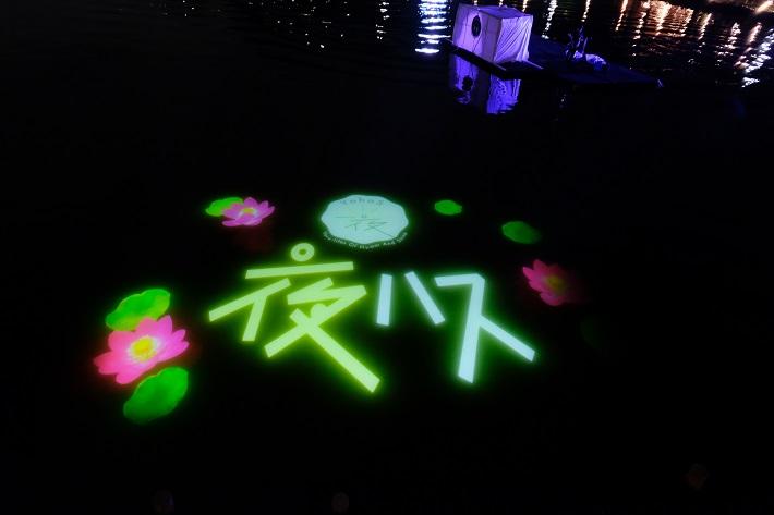 千葉公園の池にプロジェクションマッピングで映し出される大賀ハスと夜ハスのロゴ