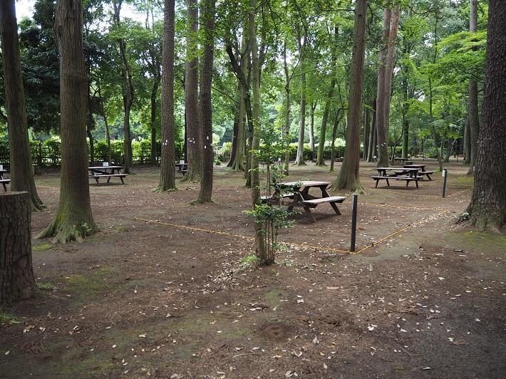 手賀の丘公園のキャンプ場