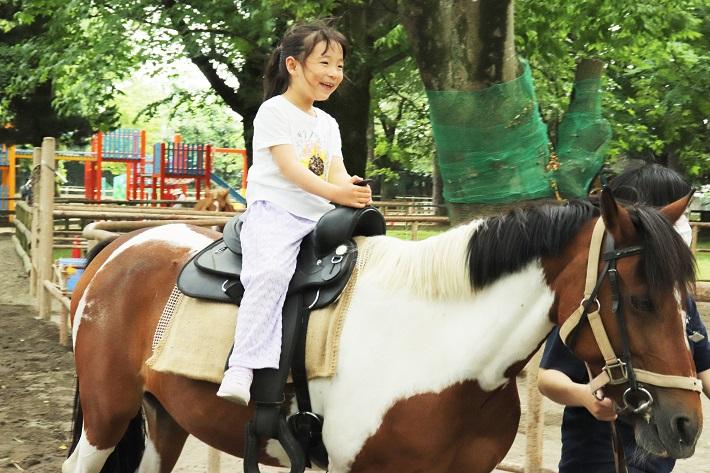 清水公園乗馬体験ができるポニー牧場
