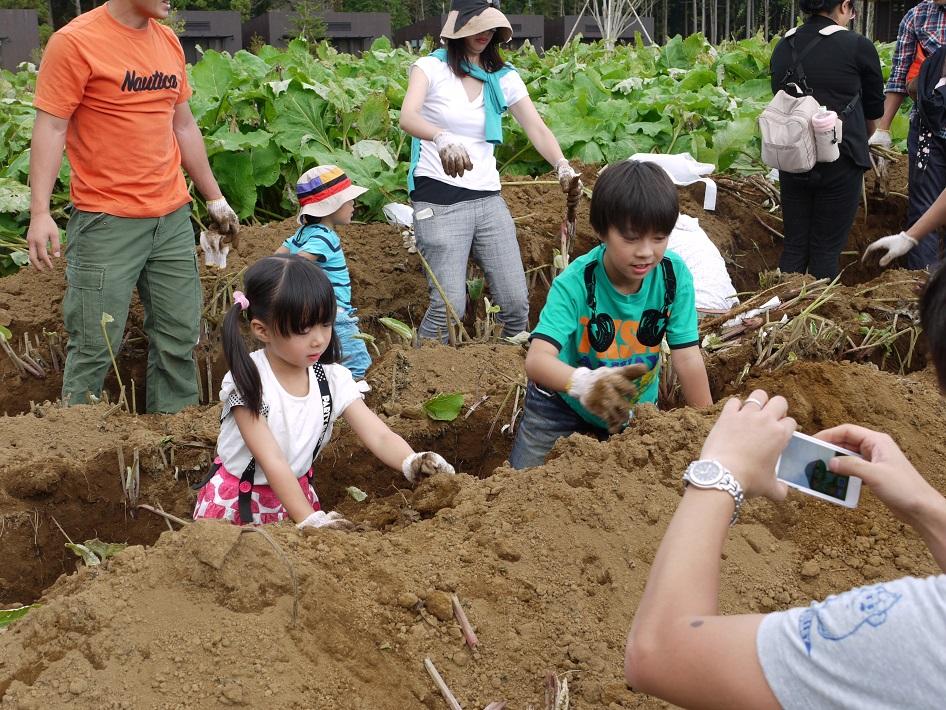 千葉県香取市の「THE FARM(ザ ファーム)」