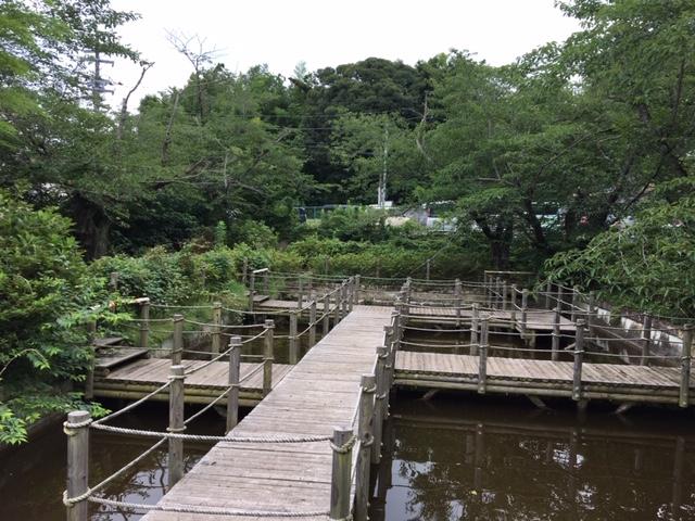 大巌寺の七不思議 不鳴の池