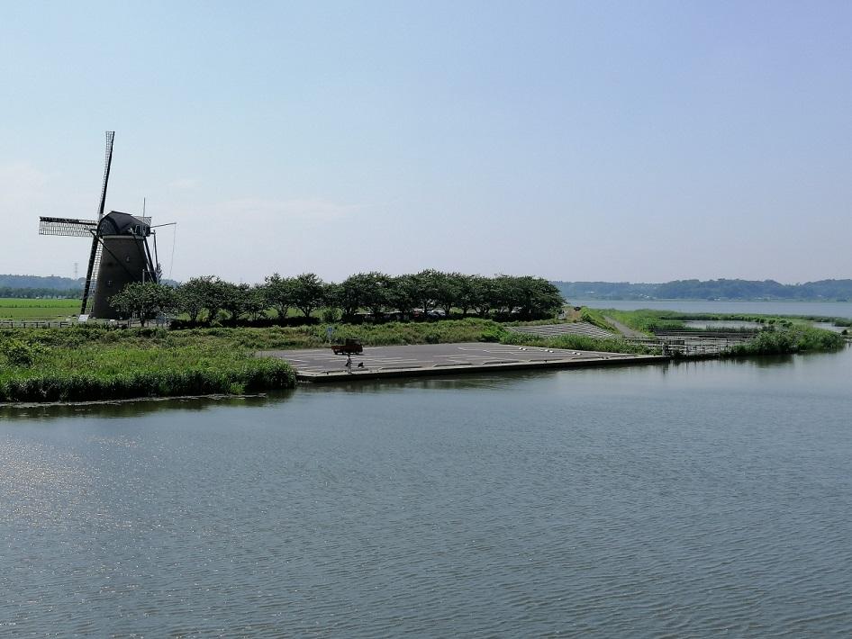 千葉県佐倉市ふるさと広場早朝の水辺で過ごそう