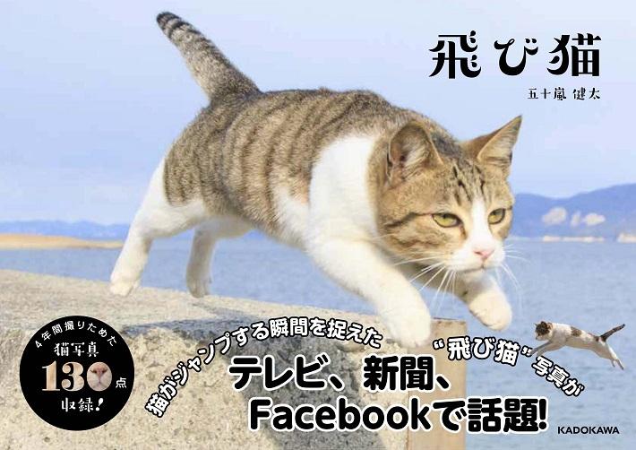 『飛び猫』