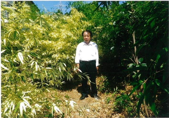 白い竹林の生みの親 田代さん